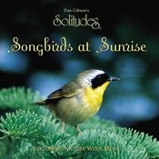 Songbirds At Sunrise Songs