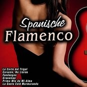 Spanische Flamenco Songs