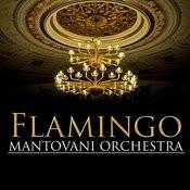 Flamingo Songs