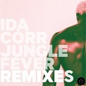 Jungle Fever Remixes Songs