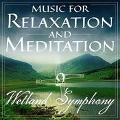 Music For Relaxation And Meditation - Wetland Symphony, Vol. 9 Songs