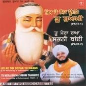 Tu Mera Rakha Sabni Thain (Vyakhya Sahit) Song