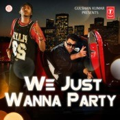 We Just Wanna Party Song