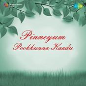 Pinneyum Pookkunna Kadu Songs