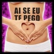 Ai Se Eu Te Pego - Single Songs