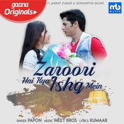 Zaroori Hai Kya Ishq Mein Meet Bros. Full Mp3 Song