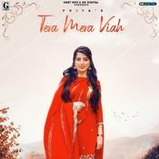 Tera Mera Viah MixSingh Full Mp3 Song