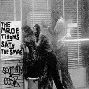 The Mroe Tihgns Saty The Smae Songs