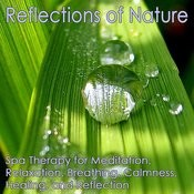 Reflections Of Nature: Meditation, Relaxation, Breathing, Calmness, Healing And Reflection Songs