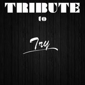 Try (Tribute To Pink) Songs