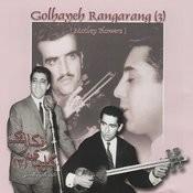 Barg-E Sabz No 265, Homayoun Song