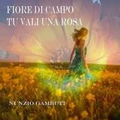Fiore Di Campo Tu Vali Una Rosa Songs