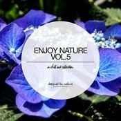 Enjoy Nature Vol. 5 - Selected Chillout Music Songs