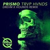 Trvp Hvnds (Drevm X Hounds Remix) Song