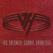 For Unlawful Carnal Knowledge Songs