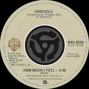 How Much I Feel / Ready For Camarillo [Digital 45] (with PDF) Songs