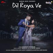 Dil Roya Ve Song