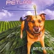 Antenna Songs