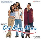 Dil Kya Kare Songs