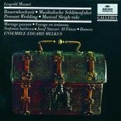 Mozart, L.: Peasant Wedding; Musical Sleigh-ride; Sinfonia burlesca / Starzer: 10 Dances Songs