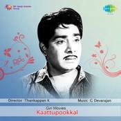 Kattupookkal Songs