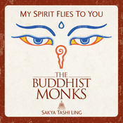 My Spirit Flies To You(HSP Pop Radio Remix) Song