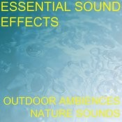 Essential Sound Effects 1 - Outdoor Ambiences, Nature Sounds Songs