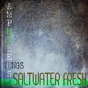 Salt Water Fresh Songs