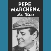 La Rosa Songs