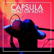 Dead Or Alive Songs