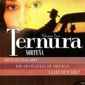 Ternura Norteña, Vol. 3 Songs