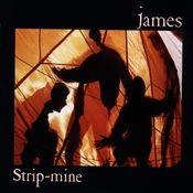 Strip-Mine Songs