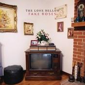Fake Roses Songs