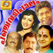 Viplava Veeryamnaanayam Kandal Song