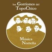 Msica Nortea Songs