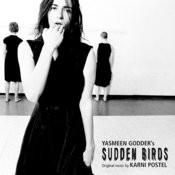 Sudden Birds Songs