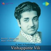 Visapinte Vili Mlm Songs