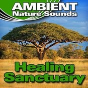 Healing Sanctuary (Nature Sounds) Songs