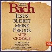 Bach: Jesus Bleibet Meine Freude Songs