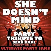 She Doesn't Mind (Party Tribute To Sean Paul) Songs