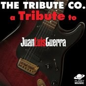 A Tribute To Juan Luis Guerra Songs