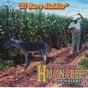 El Burro Maldito Songs