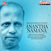 Raju Ananthaswamy