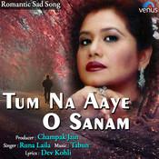 Tum Na Aaye O Sanam Song
