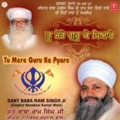 Tu Mere Guru Ke Pyare (Vyakhya Sahit) Song