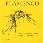 Flamenco Dance Song Song