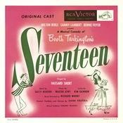 Seventeen Songs