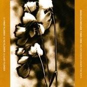 Last Flower Song