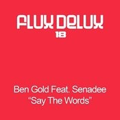 Say The Words (Aly & Fila Remix) Song