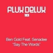 Say The Words (Senadee's Original Mix) Song